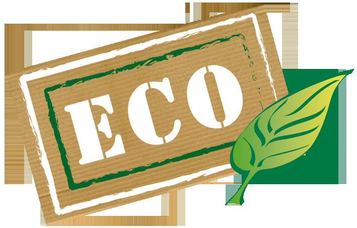 ECO funding
